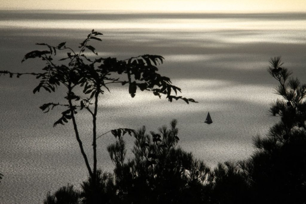 Mali Losinj I © TCEN
