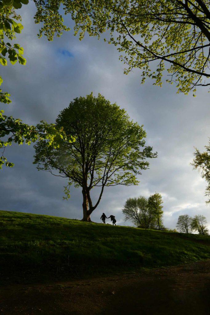 Nationalpark Eifel und Eifelsteig © TCEN